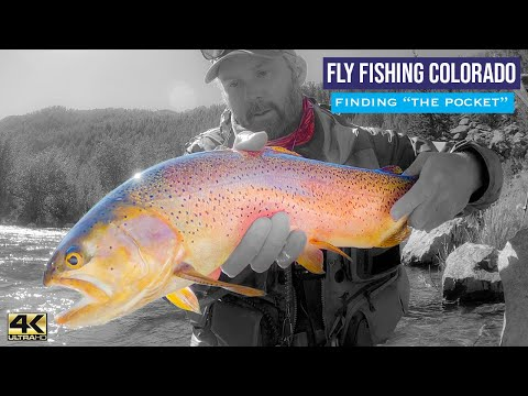 FLY FISHING COLORADO ... Finding