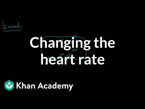Changing the heart rate - chronotropic effect   NCLEX-RN   Khan Academy