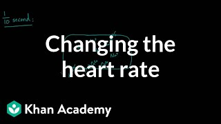 Changing the heart rate - chronotropic effect | NCLEX-RN | Khan Academy