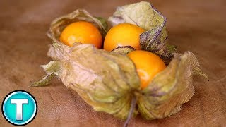 Top 10 Fruits You've Never Heard Of Part 6