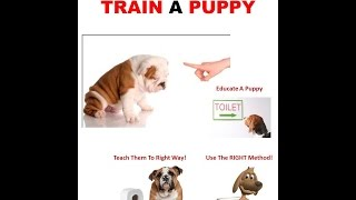 Howcast  - How to House Train a Puppy | Dog Training - Howcast