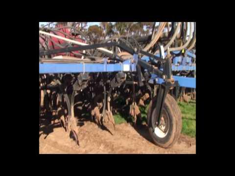 WHEAT SHEEP FARMING  GAMBLING IN WESTERN AUSTRALIA.mp4