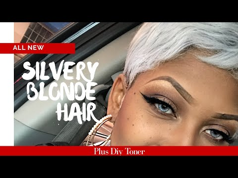 From Black to Platinum Blonde Hair  Simplest Toning Process