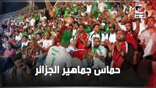 جماهير الجزائر تحمس لاعبيها أثناء مواجهة السنغال