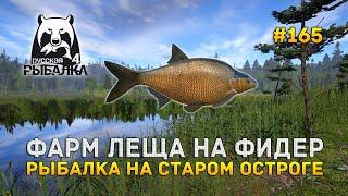 Фарм Леща на Фидер. Рыбалка на Старом Остроге - Русская Рыбалка 4 #165