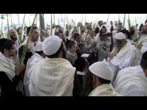 Hallel mit Rabbi Shalom Arush | Sukkot - Hoshanna Raba | 23.10.2016 | Erstaunlich - ein Muss