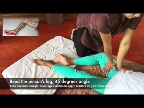 Thai Massage Techniques: Butterfly palm press on inner upper leg