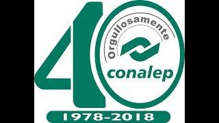1er Encuentro Nacional A Distancia De Docentes De Informática Del Conalep