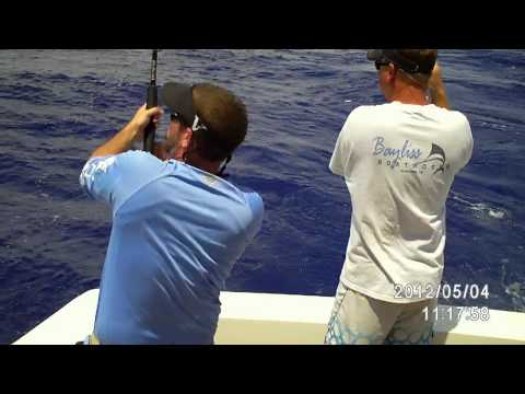 Complete Electric Yellow Fin Tuna Fishing Trip part 1 of 3.