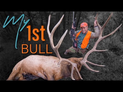 GIANT Bull! Elk Hunting on Public Land (DIY Montana)