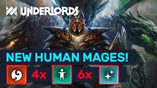 NEW HUMAN MAGE! Human Dragon 6 Mage Combo! | Dota Underlords