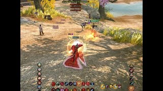 Age of Wushu: A Noob Appeared!