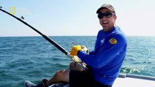 سمكة التونة العنيدة: من المركز الأخير إلى الأول   ناشونال جيوغرافيك أبوظبي