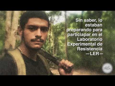 Luis Felipe quería ser lancero y terminó destrozado en un hospital psiquiátrico