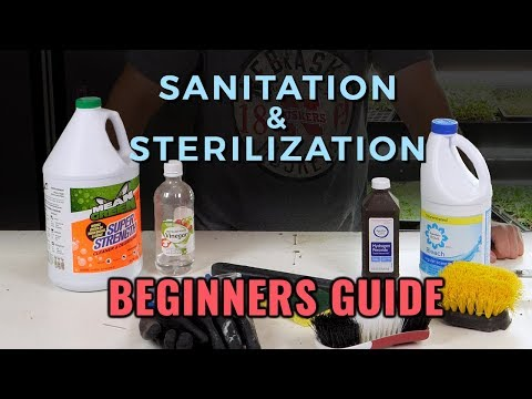 A Beginners Guide: Hydroponic Sanitation & Sterilization
