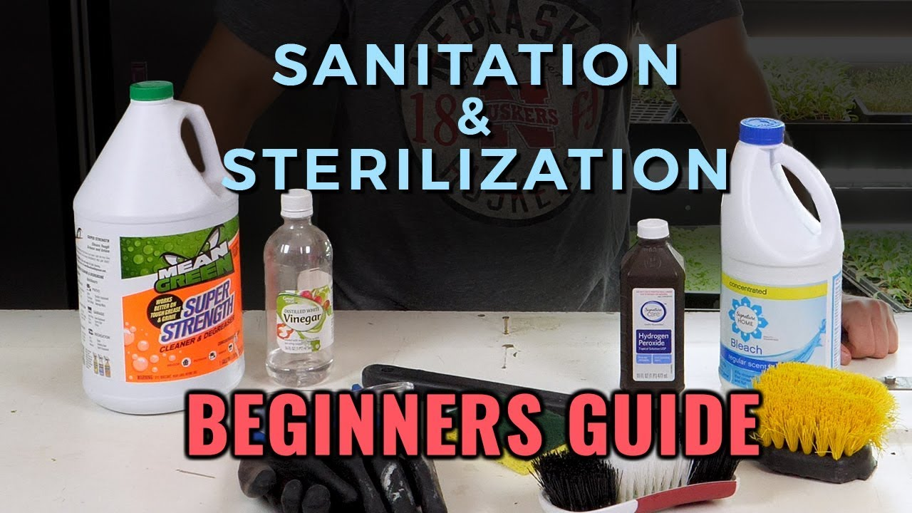 How to Sanitize and Sterilize Hydroponic Systems - Upstart