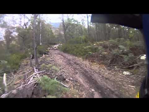 Single Track Buckland Tasmania Gas Gas EC300.MOV