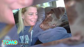Dog abuse: crazy woman duct tapes dog