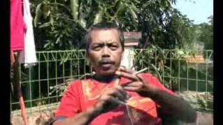 DEAL BANTUAN, PIYE JAL-06.mp4