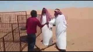 Muscat funny video(Attack by Indian to Arabic people., 2016-05-22T21:07:53.000Z)