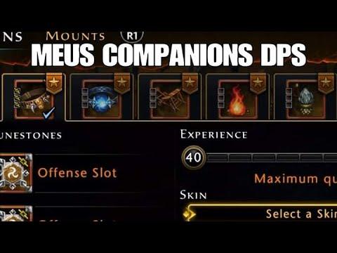 Neverwinter PS4 - MEUS COMPANIONS DPS