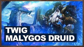 Twig Malygos Druid Is Really Good | The Witchwood Hearthstone