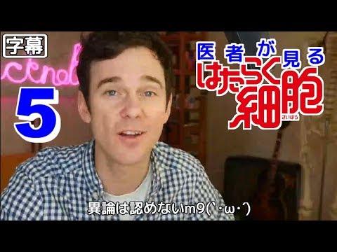 【日本語字幕】医者が見る はたらく細胞 5話 (安定の見てないのにネタバレ) 外国人の反応