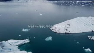 삼육김 광고