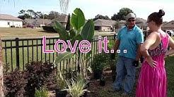 Tropical backyard makeover of our Florida Backyard by Canterbury Farms Nursery!!