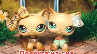 LPS сериал: Подруга из сна ( 1 серия ) /Friend from sleep (episode 1) 猫