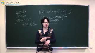 Урок 1. Вводное занятие: как написать сочинение на максимальный балл
