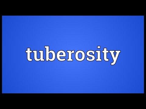 Header of tuberosity