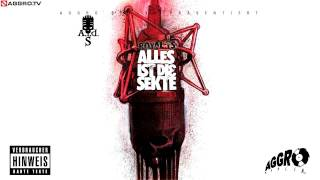 ROYAL TS  (SIDO & B-TIGHT) ERUNDICH - ALLES IST DIE SEKTE - ALBUM - TRACK 13
