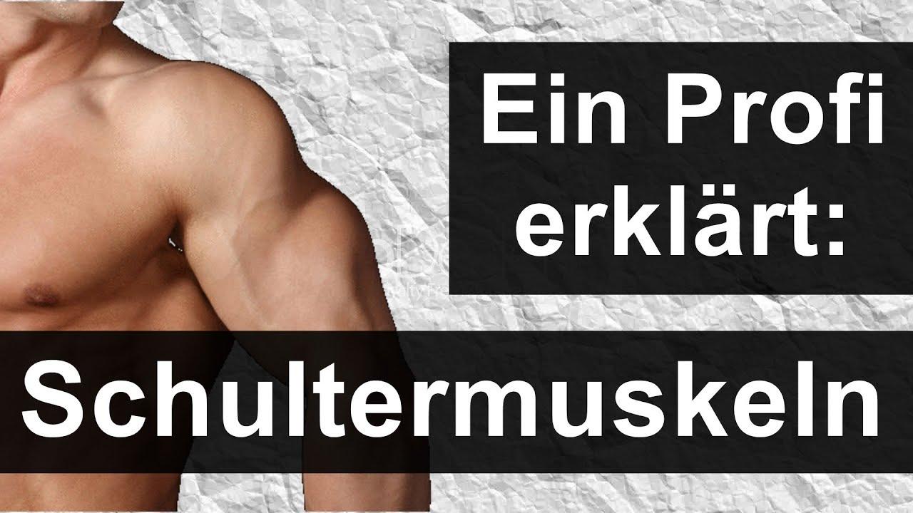 Ungewöhnlich Schultermuskelgruppen Zeitgenössisch - Physiologie Von ...