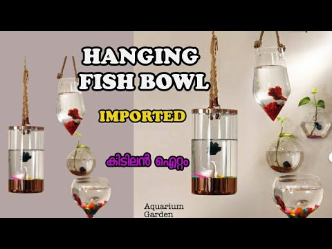 HANGING FISH BOWL (മലയാളം)  Imported Best Interior Garden Product Information In Malayalam
