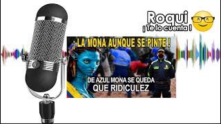 La tomba o mona aunque se pinte de azul Tomba se queda (Podcast solo audio)
