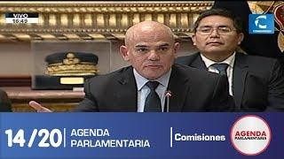 Sesión Comisión de Constitución 14/20 (17/07/19)