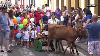 Festa de Sant'ana - Bodo Santo António   2017
