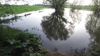 DJI Phantom 3 Professional - flying over water