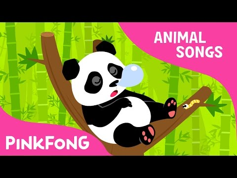 Ni Hao Panda | Panda | Animal Songs | Pinkfong Songs for Children