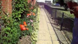 Gardening Tips with Dennis Hubbard (No. 28)