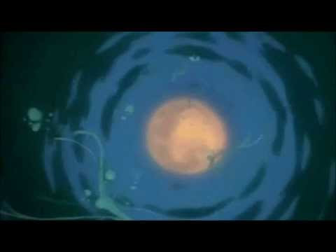 Wolfs Rain: Crying To The Moon, If Only, If Only