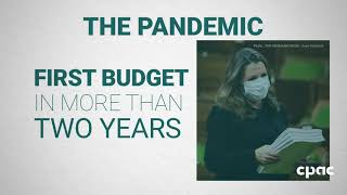 Budget 2021: The pandemic