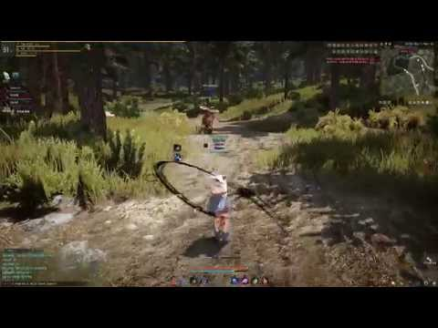 Black Desert Online Open PvP and PK Daily Routine