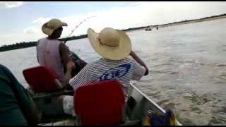 Baixar Pescaria no Araguaia - Luiz Alves - GO