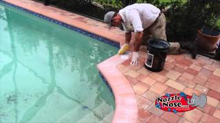 Pavers - Clean & Seal by Nozzle Nose Inc.