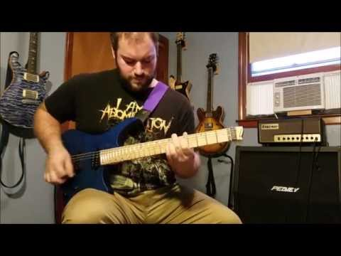 Sum 41 Does This Look Infected? Full Guitar Cover