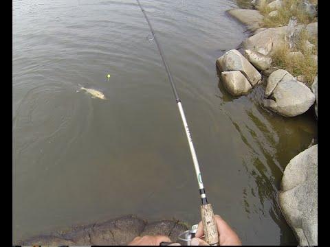 Basic walleye fishing techniques for shoreline anglers for Slip bobber fishing