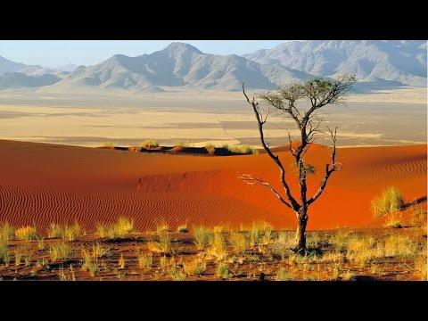 Desert Grooves Africa Mix 2 - Greening Deserts