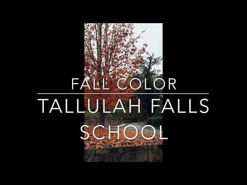 Fall Color @ Tallulah Falls School